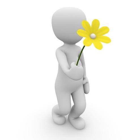 flower-1013710_640