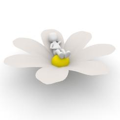 flower-1013722_640