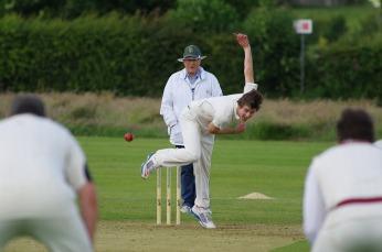 cricket-724618_640