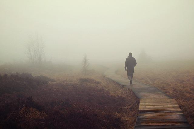 fog-1258892_640